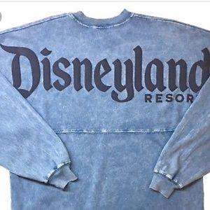 Disneyland Mineral Wash Spirit Jersey for Adults